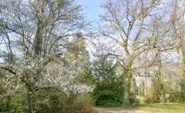 3285 - Vente Maison - 10 pièces - 315 m² - Saint-Pryvé-Saint-Mesmin (45) - Loiret